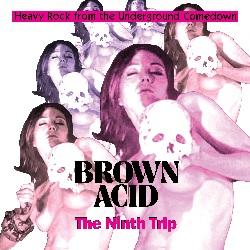 VARIOUS - BROWN ACID: THE NINTH TRIP
