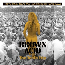 VARIOUS - BROWN ACID: THE TENTH TRIP