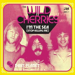 THE WILD CHERRIES - I'M THE SEA  (STOP KILLING ME)