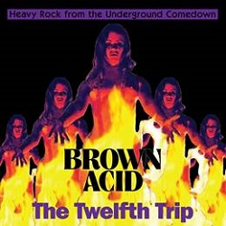 VARIOUS - BROWN ACID: THE TWELFTH TRIP