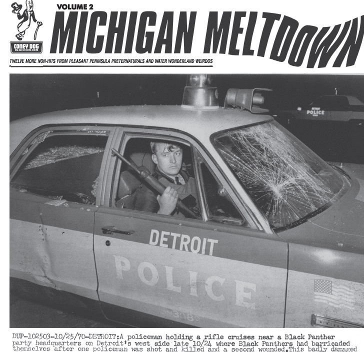 VARIOUS - MICHIGAN MELTDOWN VOL: 2