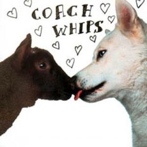 COACHWHIPS - BANGERS VS FUCKERS