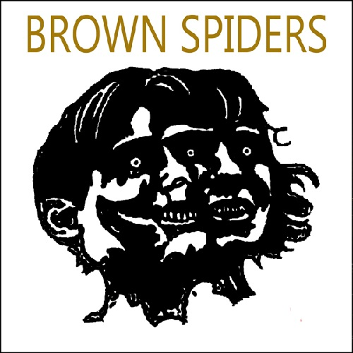 BROWN SPIDERS - IT'S SOMETHING TO DO