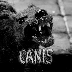 ALEIX PITARCH  - CANIS SOUNDTRACK