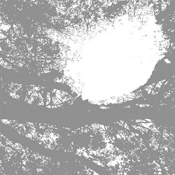 COMETS ON FIRE - FIELD RECORDINGS FROM THE SUN