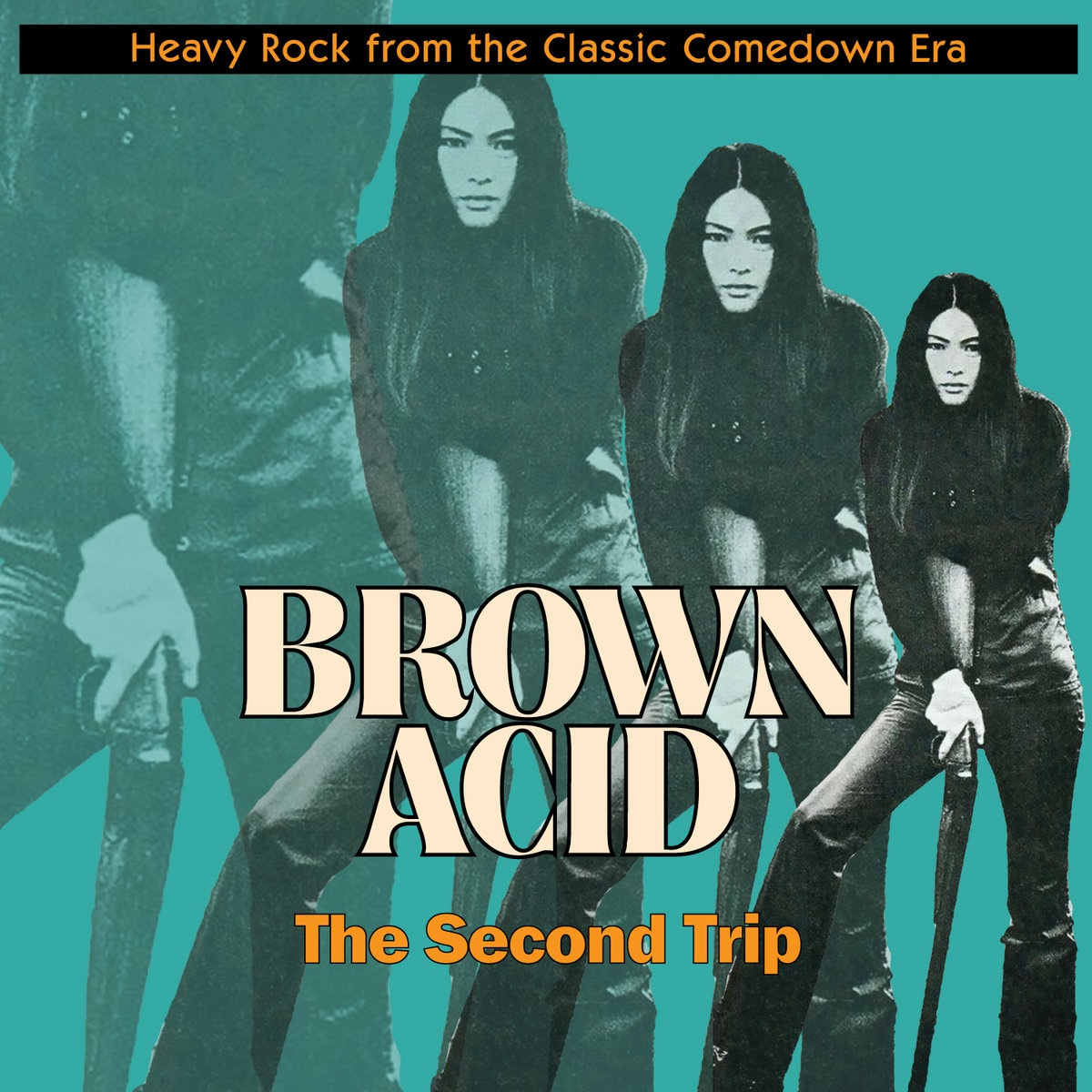 VARIOUS - BROWN ACID: THE SECOND TRIP