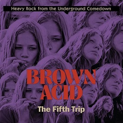 VARIOUS - BROWN ACID: THE FIFTH TRIP