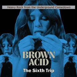 VARIOUS - BROWN ACID: THE SIXTH TRIP