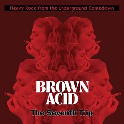 VARIOUS - BROWN ACID: THE SEVENTH TRIP